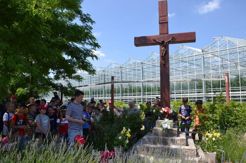 Szent Antali kereszt-járás Balástyán