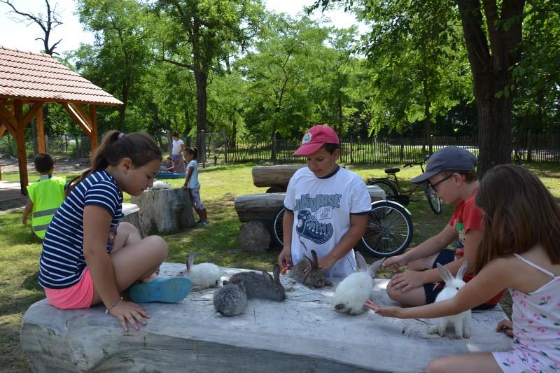 Állatsimogatóban a balástyai nyári táboros gyerekek