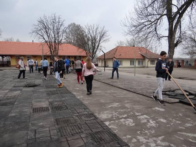 A Tesz Vesz Tavasz programja Balástyán